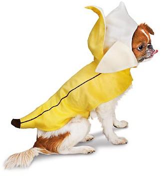 Petco Banana Halloween Dog Costume