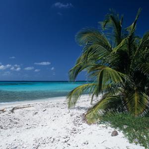 Belize | Sheknows.ca