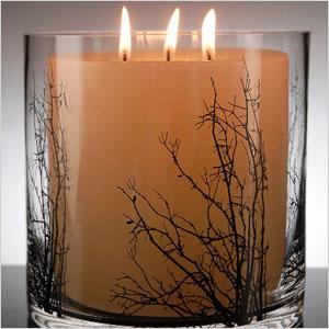 Birch tree branch candleholder