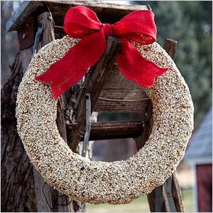 Bird seed winter wreath | Sheknows.ca