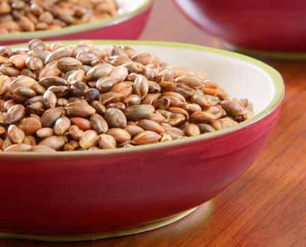 Bowl of organic barley