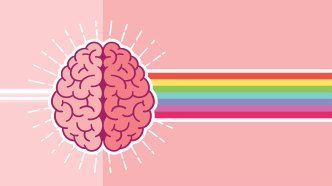 Brain on a pink background with