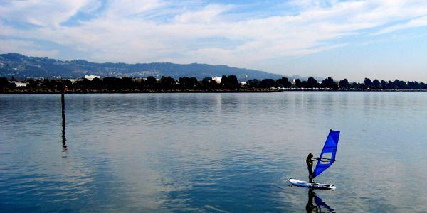 Cal sailing