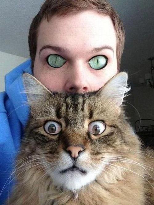 human cat eye swaps