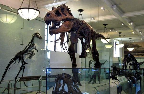 Exploring museums with your kids