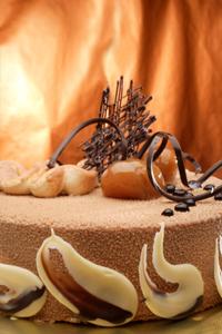 Chocolate Chestnut Cake