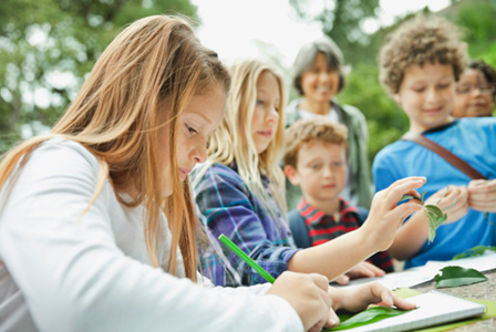 Children drawing leaves on field trip   Sheknows.com