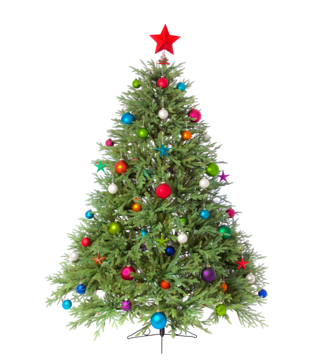 The Tradition Of Christmas Trees: The Best Of Pinterest: Christmas Trees