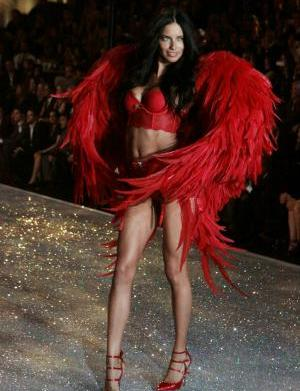 Anatomy of a VSFS model: How