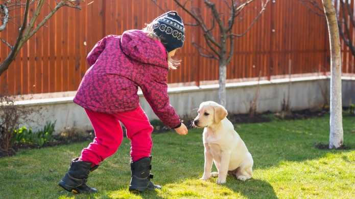 4 dog-training tips I wish parents