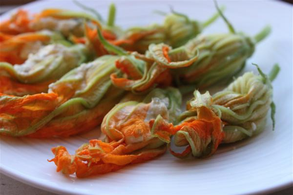 Zucchini blossoms stuffed with ricotta and