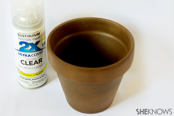 Earth day plant crat | Sheknows.com - spray with pot with clear acrylic