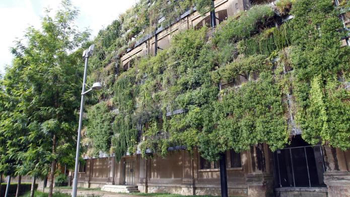 25 Vertical gardens that will take