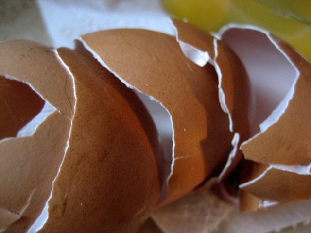 broken brown egg shells