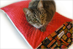 Pillowcase pet bed cover