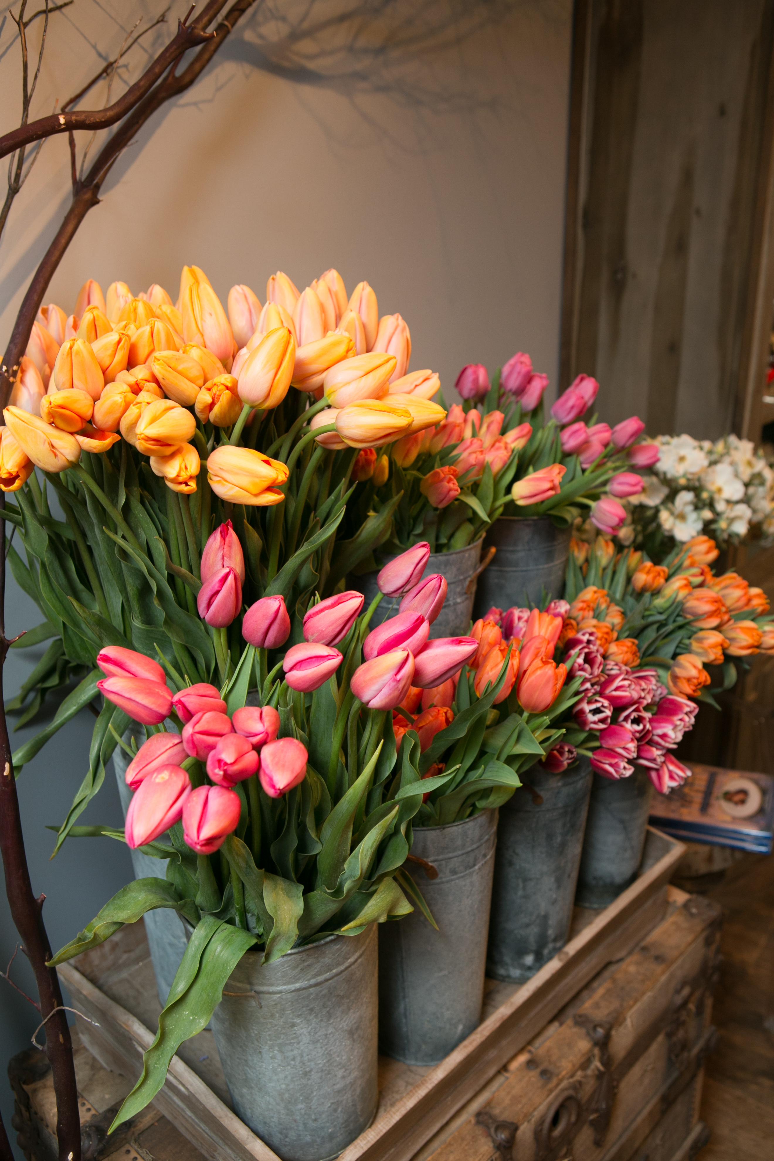 floral-shop