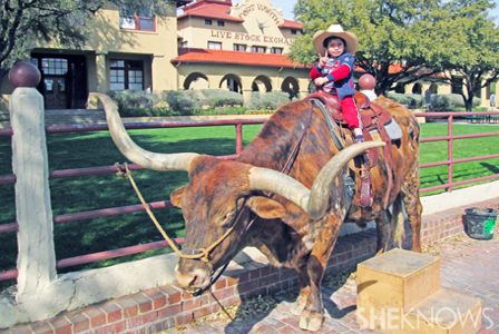 Family Fun In Fort Worth Sheknows