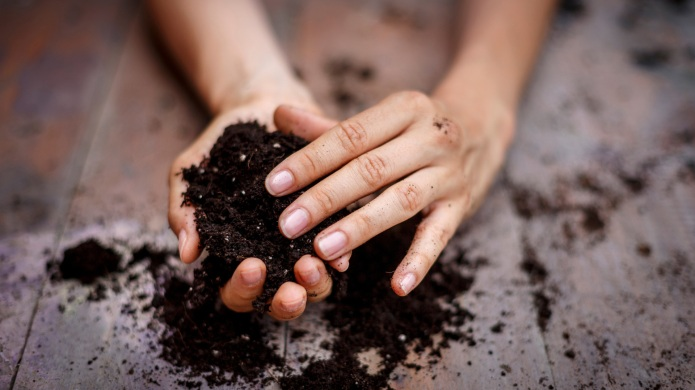 How gardening can help prevent chronic