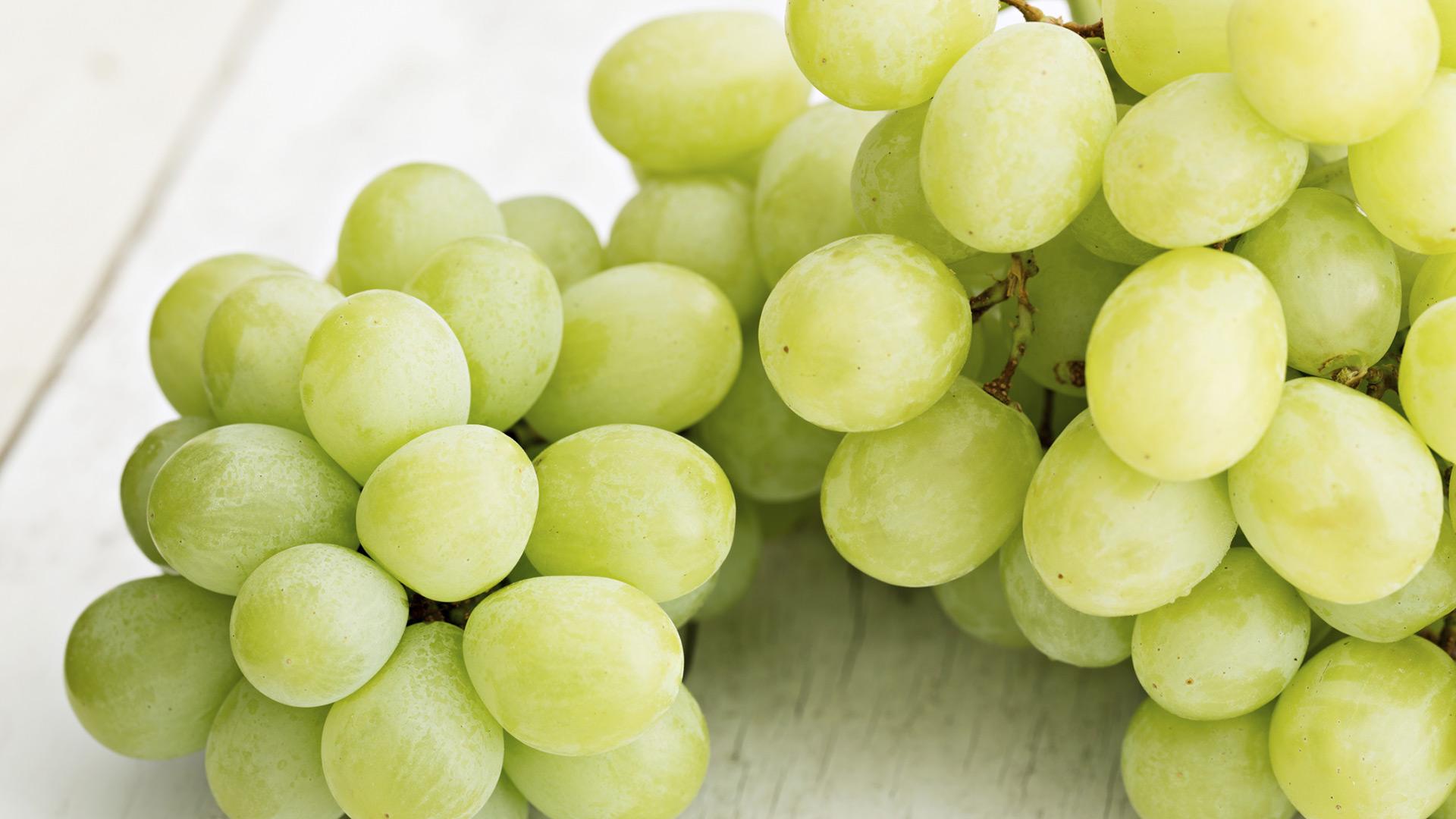 Green Grapes | Sheknows.com