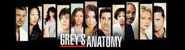 The Grey's Anatomy team of 2009