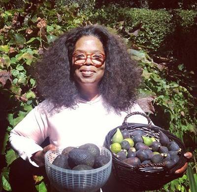 12 Celebrities who garden