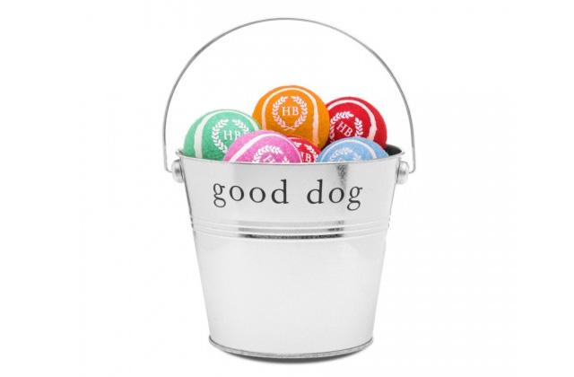 bucket of dog tennis balls