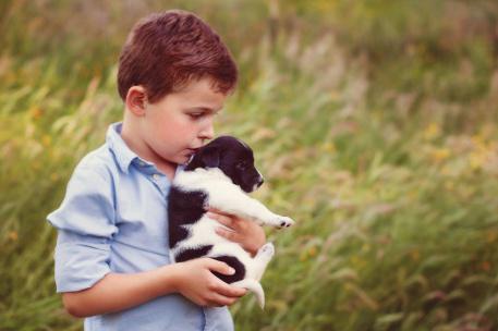 little boy kissing puppy