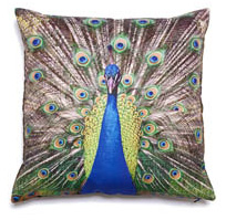 East Camp Home Peacock Pillow Cover
