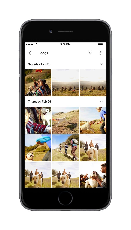 google-photos-search-dog