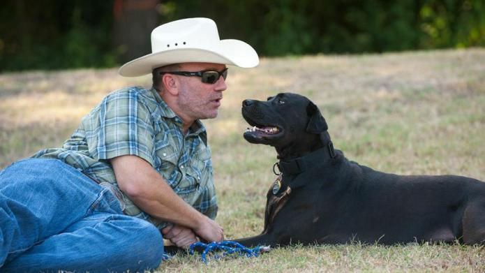 You'll love how this rescued Lab