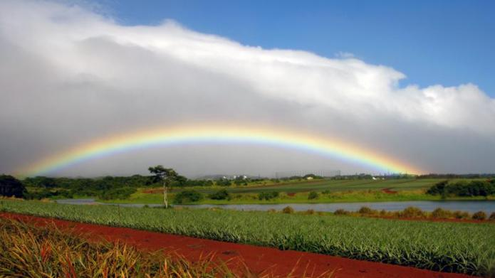Dole Plantation – Wahiawa, Hawaii