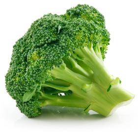 isolated broccoli