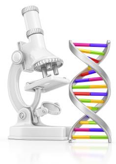Isolated genetics
