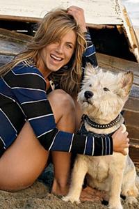 Jennifer Aniston and Norman