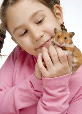 Monday Mom challenge: Consider non-traditional pets