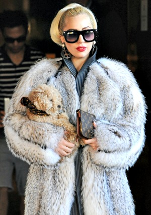 Lady Gaga fur coat