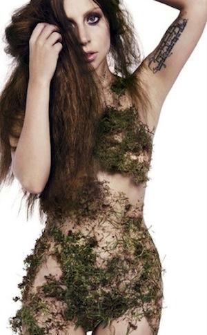 Lady Gaga moss
