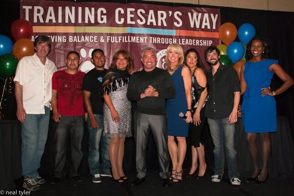 Training Cesar's Way