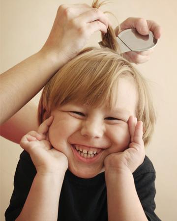 Little boy having lice treatment