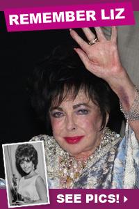 Photo tribute to Elizabeth Taylor