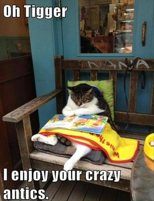 LOL Cats: Acting like a kid can keep you young