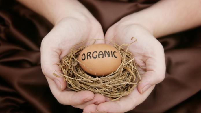 Is organic motherhood just a status