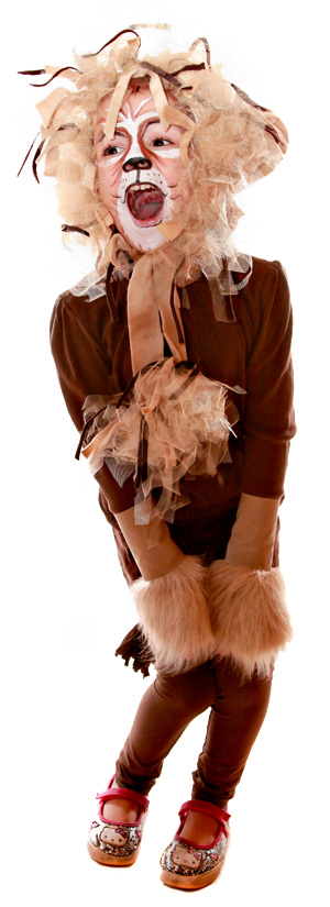 Do-it-yourself lion costume