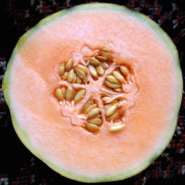 melon cut in half