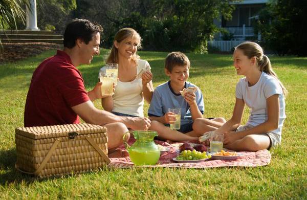 Perfect summer picnic recipes and picnic