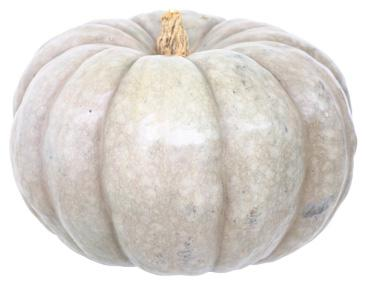 Not your orange and black Halloween