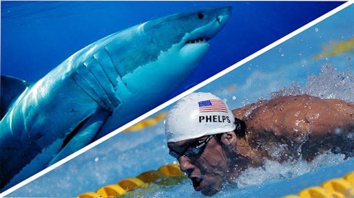 7 Shark Week Programs You Actually