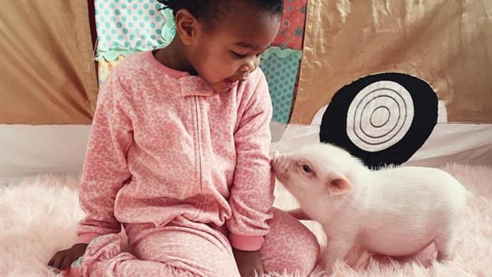 Two-year-old and her piglet BFF make