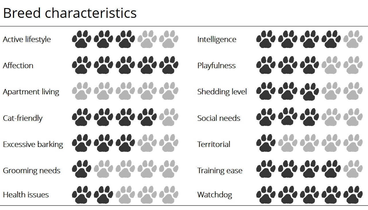 Otterhound breed characteristics