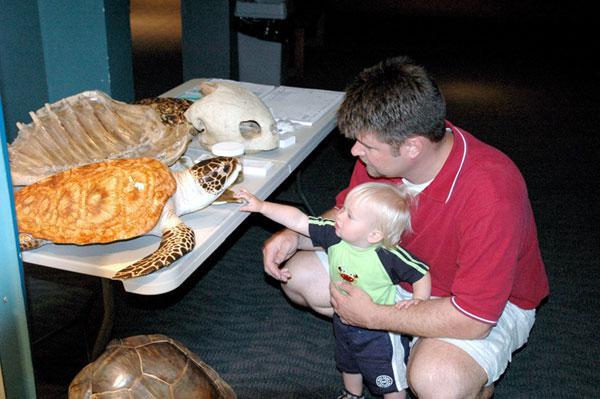 North Carolina Aquarium on Roanoke Island,